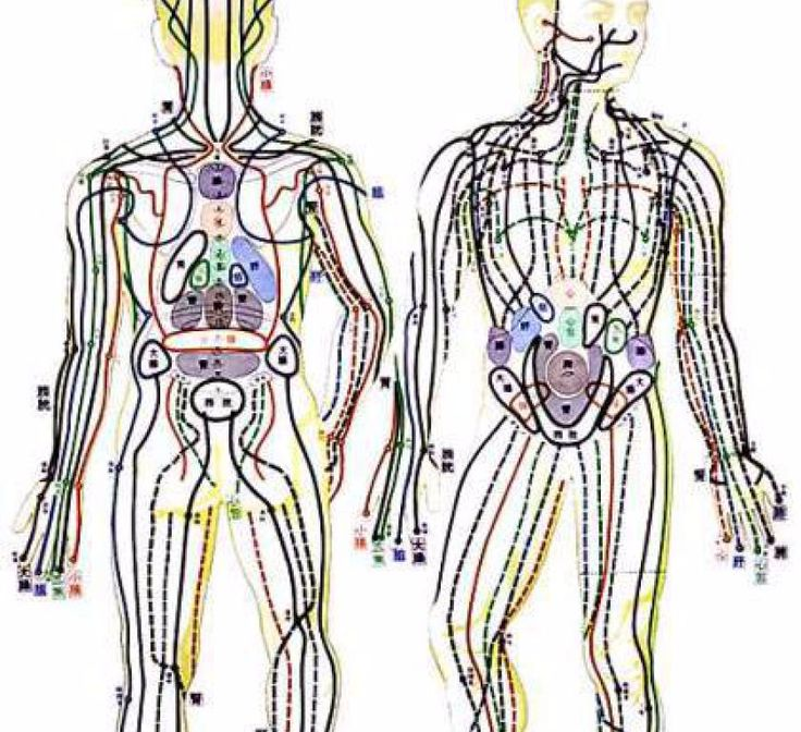 Гимнастика Макко-хо представляет собой комплекс, состоящий из четырех базовых упражнений, которые выпрямляют позвоночник, восстанавливают подвижность суставов ног, стимулируют кровообращение