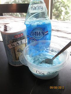 Oh My Gluestick: Homemade DOG SCRUB flea treatment shampoo. DIY flea killer for pets: mix half a container of iodized salt & a few squirts of the blue Dawn dish soap to get the consistency of a good salt scrub. don't want it too runny or dry. Scrub pets, rinse, careful not to get in eyes. Dawn is the source of killing fleas. Massaging salt in the skin helps to kill flea eggs that were laid.