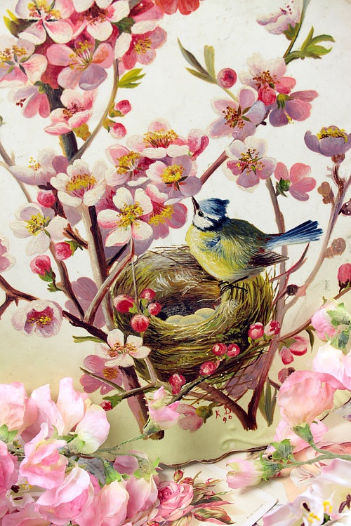 Vintage Home - Handpainted Victorian Bird and Blossom Plate.