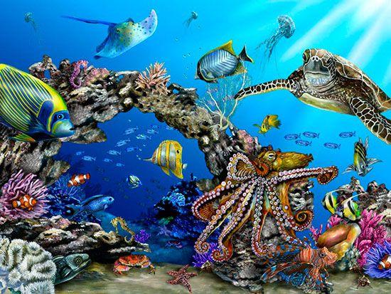 Underwater Murals & Sea Life Wallpaper   Murals Your Way