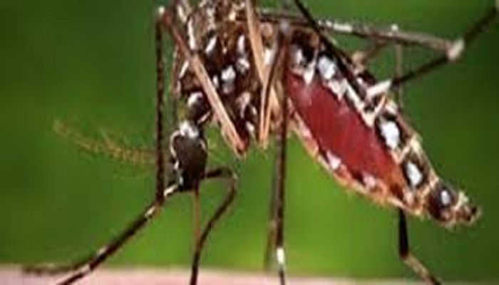 Global Zika Virus Sales Market 2017 - Sanofi, Cerus, Intrexon, NewLink Genetics, GlaxoSmithKline - https://techannouncer.com/global-zika-virus-sales-market-2017-sanofi-cerus-intrexon-newlink-genetics-glaxosmithkline/