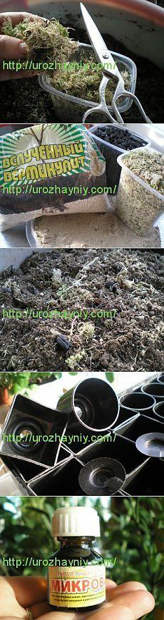 Подготовка грунта для посева семян. Автор Наталья Московских-Кондратьева. | Самоцветик