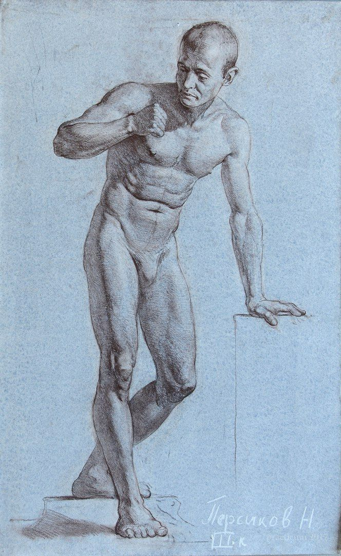 74 best Aatomy drawing figure images on Pinterest   Figure drawing ...