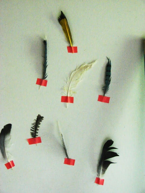 Darkest grey, green grey, and neon red // feathers taped to Aesthetic Outburst's wall