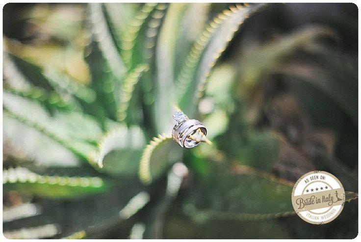 Wedding Rings on a succulent plant in #Positano #italianstyle, ph Gianluca Adovasio