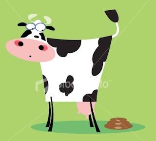 Secret Cow Facts