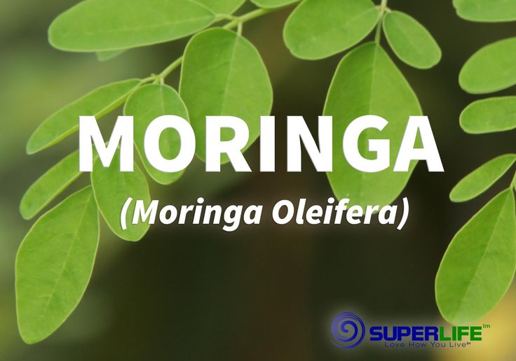 """If you find yourself saying, """"What is moringa?"""" you aren't alone. It is a newcomer, but with incredible benefits. It won't be out of the spotlight for long!  Luckily I get a little everyday in Shakeology."""