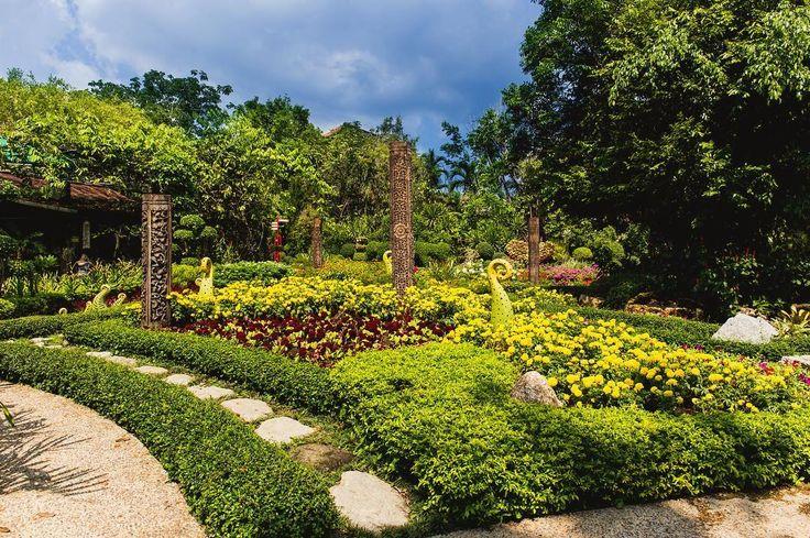 The wonderful botanic garden at Phuket Thailand