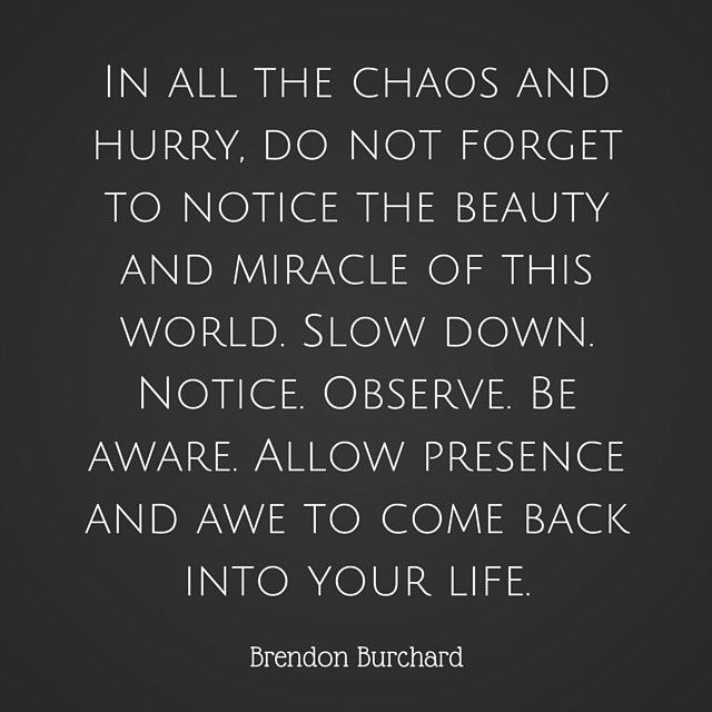WEBSTA @ brendonburchard - Slow down. Appreciate all that is around you. Be present.