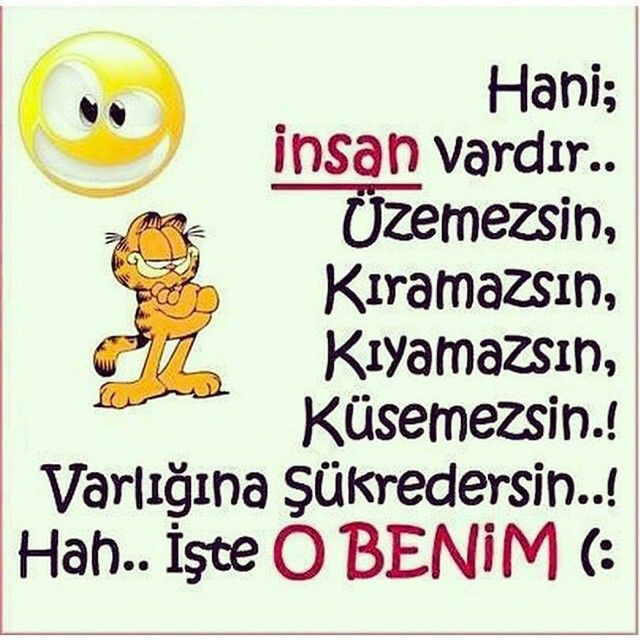Osman Tekin @tekinosmn Instagram photos | Websta (Webstagram)