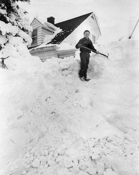 All 78 Tarot Cards Printable Pdf: 1000+ Images About Blizzard Of 78 ️ On Pinterest