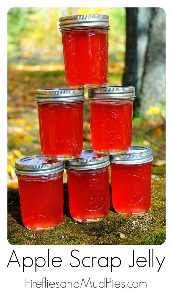 17 best images about recipes canning on pinterest for What to make with leftover applesauce