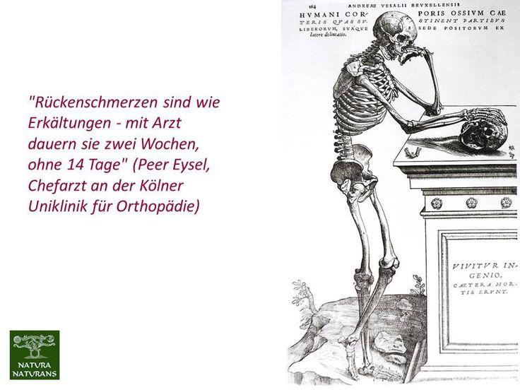 """""""Rückenschmerzen sind wie Erkältungen - mit Arzt dauern sie zwei Wochen, ohne 14 Tage"""" (Peer Eysel, Chefarzt an der Kölner Uniklinik für Orthopädie)  85% der Deutschen leiden unter Rückenbeschwerden - 15% der Krankschreibungen sind davon betroffen. Die Zahlen steigen jährlich kontinuierlich und erheblich an. 50% davon werden mit CT abgeklärt und 41% erhalten opiathaltige Schmerzmittel (Ibuprofen ist DER Blockbuster in der Apotheke). Hilft eine OP? Nur in wenigen Fällen und sehr oft wird dann…"""