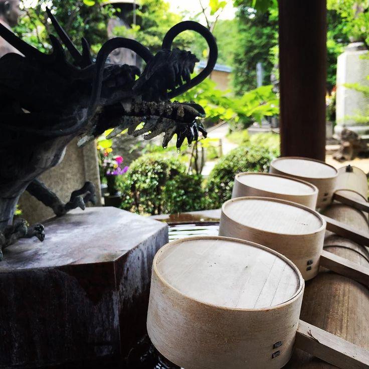 #東京 の #お盆 は #7月  #真夏 の #墓参り  #手水 #東光院 #沼部 #大田区 #東京 #六郷土手  #tokointemple #numabe #ootaku #tokyo #japan #temple