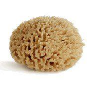 Natural Wool Sea Sponge - Bath Body Skin Care - Bathing Sponge - Multi