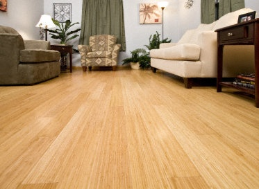 81 Best Images About Floors Bamboo Amp Cork On Pinterest