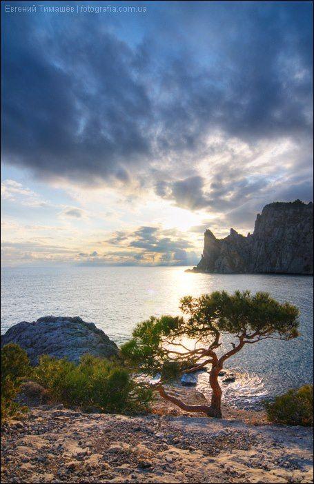 Black Sea, UKRAINE, from Iryna