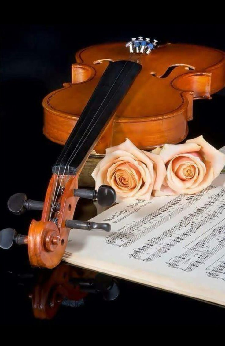 Wedding Music A Brides Guide To Selection As You Plan Your May Begin Wonder What Musical Pieces Will Need For The