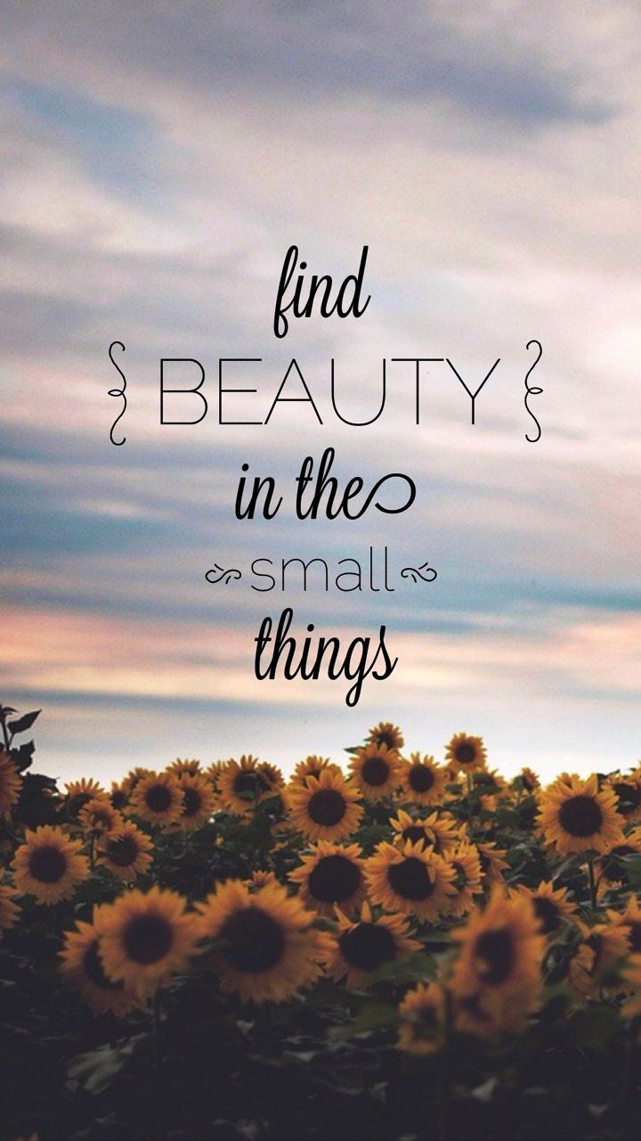 Find #beauty in the small things... #motivational #inspirational