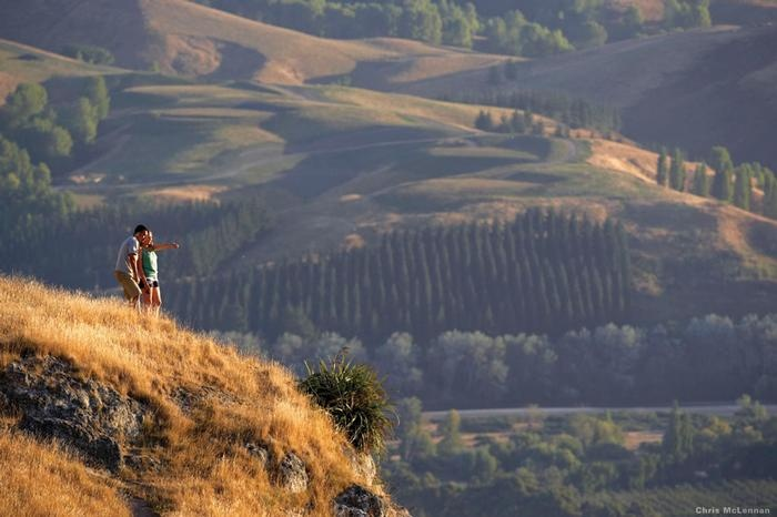 Watch Hawke's Bay life moving along from the lofty nature trails of Te Mata Peak.