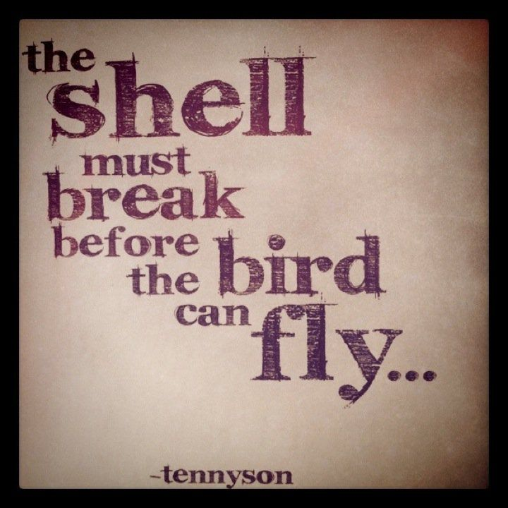 Get out of your shell!  Old Calcified attitudes we are often unaware of limit our possibilities.  Let us all fly.
