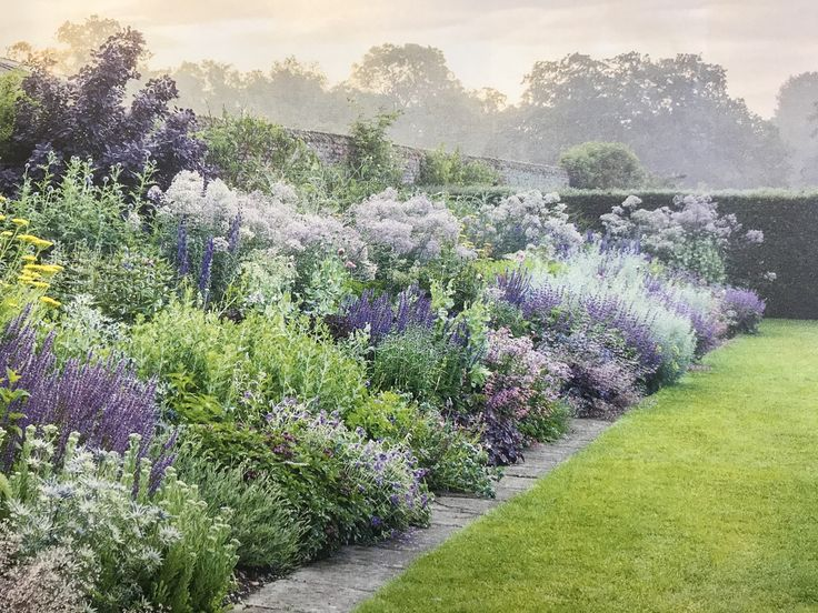 Perennial border repetition in color and species
