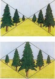 Resultado de imagen para como dibujar un arbol en perspectiva
