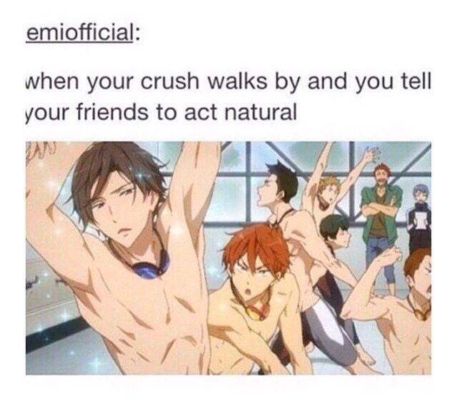 Free! || anime funny