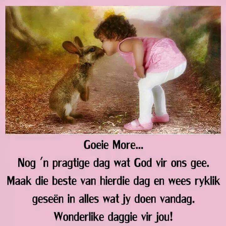 Good Morning Everyone In Afrikaans : Best images about goeie more on pinterest