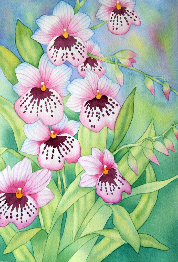 Акварельные цветы — картинки для декупажа