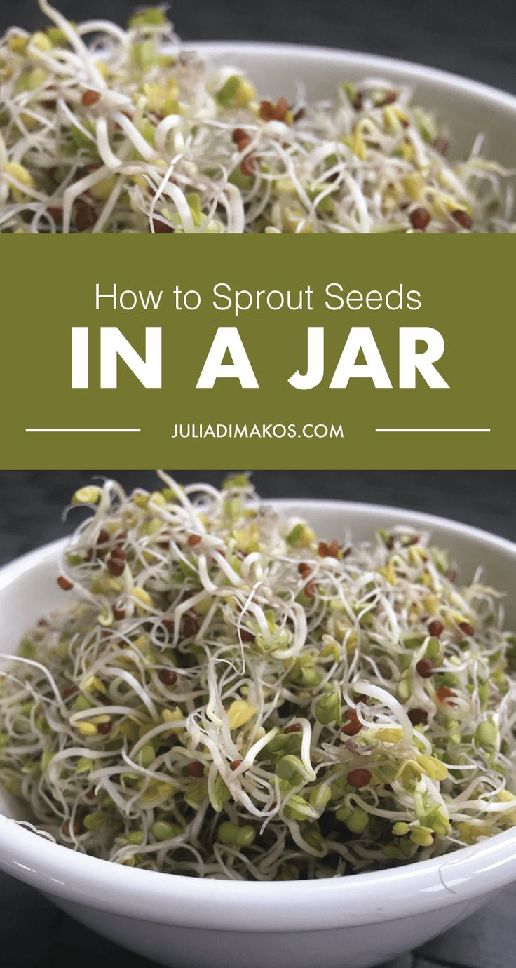 How to Sprout Seeds in a Jar