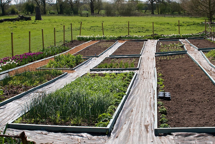 26 Best Images About Raised Beds On Pinterest