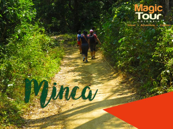On the road to Minca! #magictour #hikking #travel #adventures