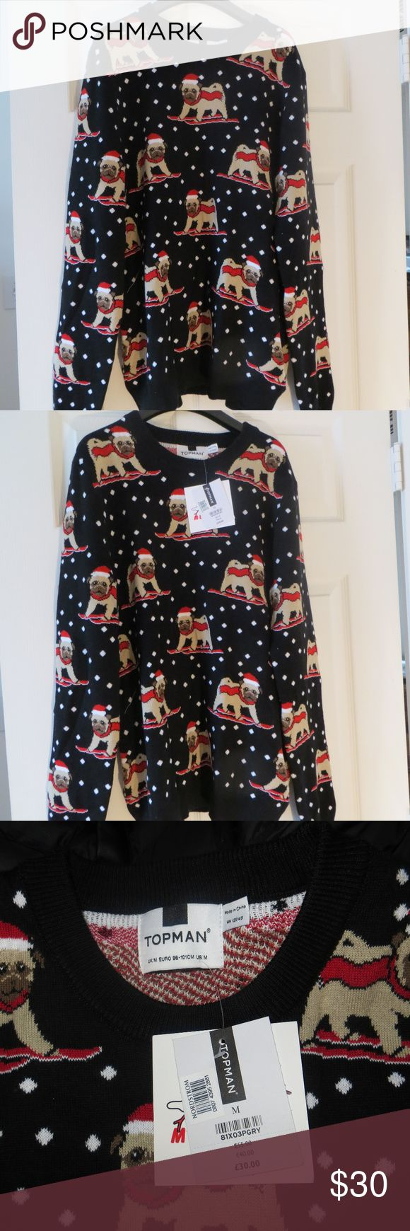 Pug Sweater Super warm sweater featuring a Pug wearing a Santa hat, scarf, & skis.  This is a MEN'S Medium. Topman Sweaters Crewneck