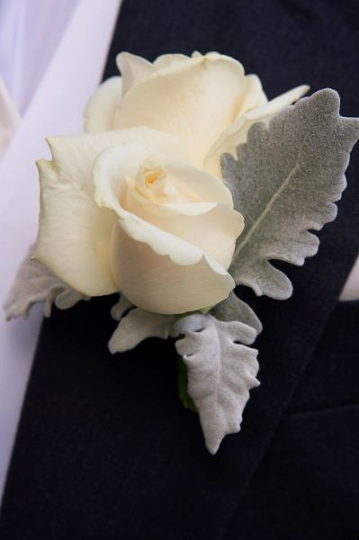 Groomu0027s Boutonniere   Ivory Rose And Dusty Miller