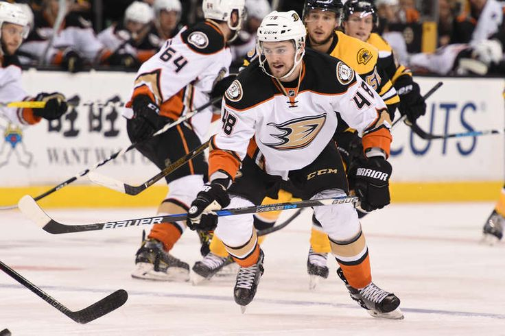 Logan Shaw #48 of the Anaheim Ducks skates against the Boston Bruins at the TD Garden on December 15, 2016 in Boston, Massachusetts.