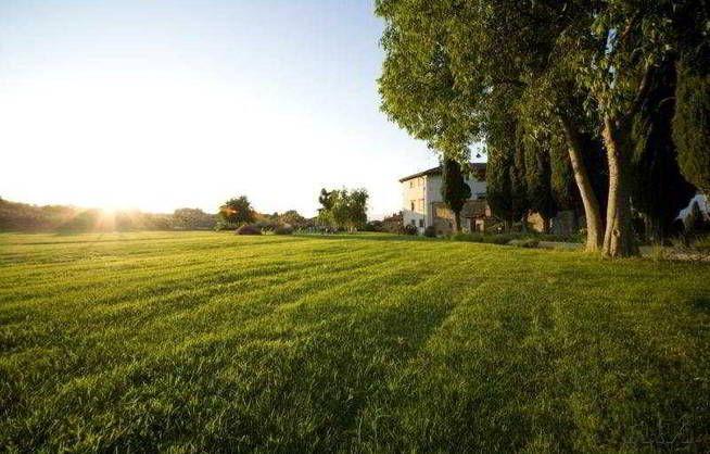 Beautiful sunny day at Villa Campestri olive oil resort in Vicchio