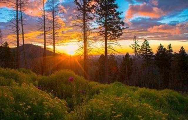 This Colorful Life: Ruidoso, New Mexico- Mountain Life