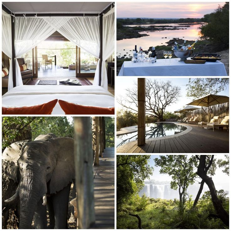 Toka Leya is situated in Zambia's Mosi-oa-Tunya National Park on the banks of the mighty Zambezi. Twelve luxurious en-suite tents with expansive decks soak up the dramatic views & amazing wildlife. Wooden walkways snake between the units & main area, limiting our footprint on this pristine area. The camp's generous dining, lounge & bar areas offer a scenic spot for pre- or post-safari R&R.