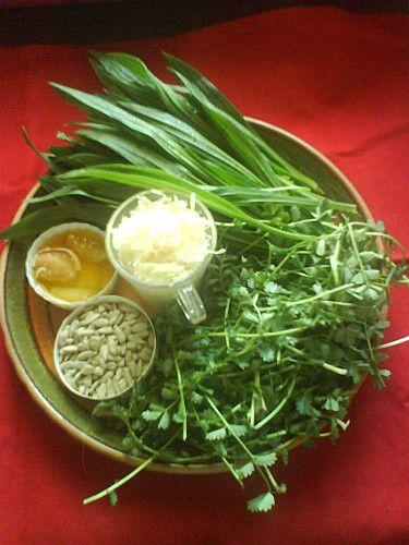 Pesto de plantain et de pimprenelle
