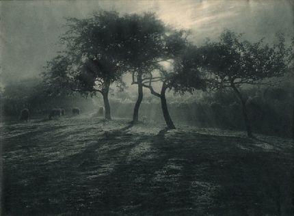 Léonard Misonne: Art Photography, Artist, Landscape, Pictorialists Place