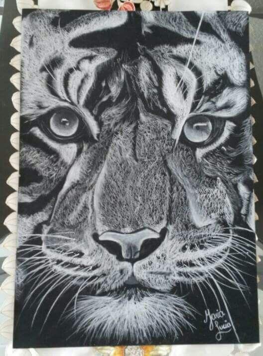 León-Lion