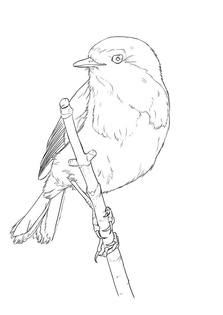 Remark dessiner un oiseau