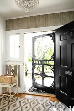 Black front door / security door