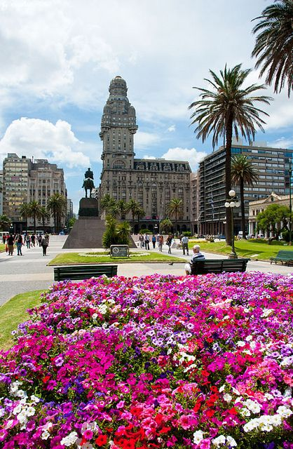 La plaza independencia en primavera. Montevideo