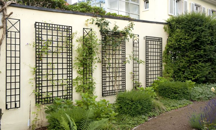 Best 25 Wall Trellis Ideas On Pinterest Garden Projects