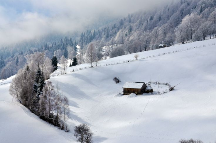 Romanian hut