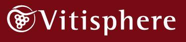 Siguiendo a Vitisphere en twitter www.twitter.com/#!/vitisphere_sa