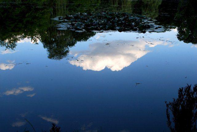 Niebo w wodzie