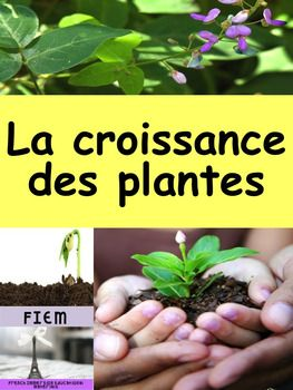 French sight words to learn the vocabulary of: La croissance des plantes to support your science and language units and stimulate oral communication. This resource will be a great support to your science program. This package includes 28 colourful flashcards on the theme of: La croissance des plantes.
